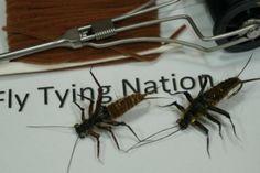 FlyTyingForum.com - Buggy Adult Stonefly Nymph