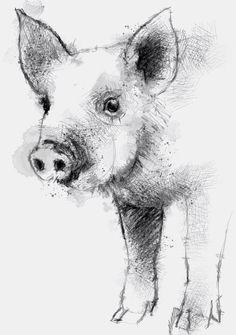 Twitter 'Piglet' by @Sean_Briggs