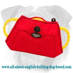 High-Quality #Bite #Builder for #English #Bulldog of #French #Linen $33.90 | www.all-about-english-bulldog-dog-breed.com
