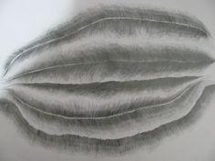 desenho44