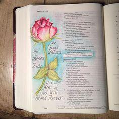 Susan Gizinski @susangizinski Isaiah 40:8Instagram photo | Websta (Webstagram)