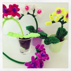 Video tutorial is now available for the pipe cleaner orchids: http://www.pipecleanercrafts.co.uk/#!orchid-video-diy/ch1b