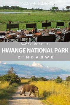 Safari in style at Hwange National Park, Zimbabwe #africa #travel #safari