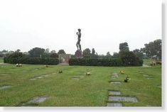 218dda0286f024f79fe17a1f93b5469d - Woodlawn Memory Gardens St Petersburg Fl