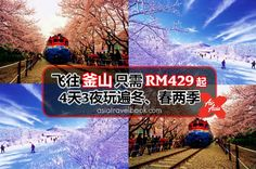 AirAsia X飞往釜山RM429起!4天3夜玩遍釜山冬、春两季,看小编的穷游攻略~