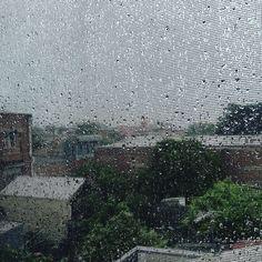 #100happydays #day89  #summer #rain