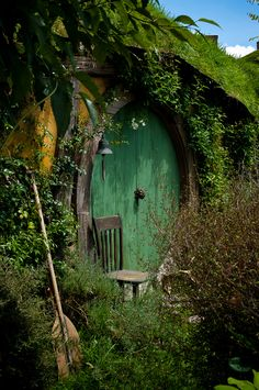 I got to go to the hobbiton set for Christmas and since I live in NZ I got to go to the movie