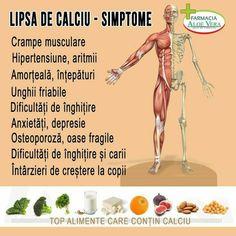 Human Anatomy, Dory, Aloe Vera, Good To Know, Doterra, Healthy Recipes, Memes, Romania, Sports
