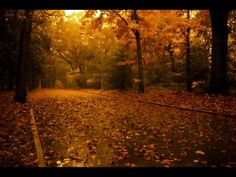 ▶ Vashti Bunyan - Autumn Tears - YouTube