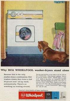 Vintage advertisement with Dachshund on dachshundlove.blogspot.nl