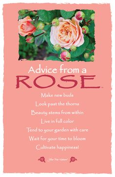Advice from a Rose Frameable Art Card – Your True Nature, Inc. Drake, Rose Quotes, Rose Sayings, Floral Quotes, Architecture Quotes, Garden Quotes, Advice Quotes, True Nature, Garden Care