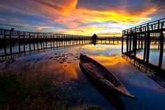 Lotus lake in fisheye by Arthit Somsakul on 500px