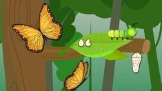 Metamorfose da Borboleta - Smartkids                                                                                                                                                                                 Mais
