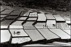 阮義忠 | 桃園復興爺亨部落, 1978