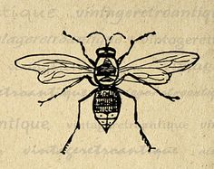 Bees Digital Image Download Collage Sheet Insect Bee Artwork