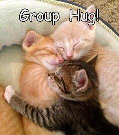 Aww! cute!