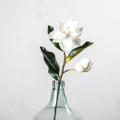 Magnolia Bud and Bloom Stem - Magnolia Market | Chip & Joanna Gaines