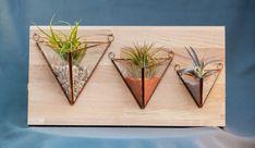Terariu cu plante, lucrat manual, piramidă de perete - Greenarium Planter Pots, Vintage, Vintage Comics