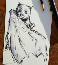 Bat Sketch, Animal Drawings, Art Drawings, Theme Tattoo, Art Sketches, Art Inspo, Painting & Drawing, Art Reference, Cool Art