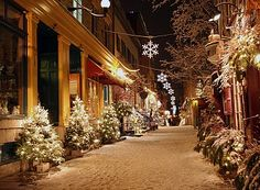 Christmas Night In Quebec City Stock Image - Image of lamp, lights: 3779521 Christmas Night, Little Christmas, All Things Christmas, Christmas Holidays, Merry Christmas, Christmas Decorations, Christmas Trees, Christmas Shopping, English Christmas