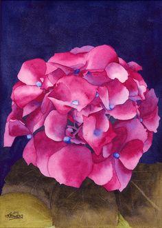 Summer Hydrangea Painting  - Summer Hydrangea Fine Art Print