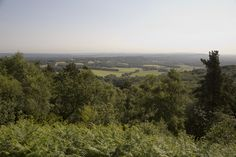 Gorgeous views, Hindhead