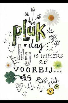 Foto: Pluk de dag Hij is immers zo voorbij. Geplaatst door PuckDupont op Welke.nl