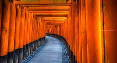 "japan_impressions on Twitter: ""#fushimi #inari #shrine #shinto #fushimiku #kyoto #japan #japanimpressions #伏見稲荷 #大社 #伏見区 #京都 #日本 #sonya7 #zeiss1635 https://t.co/p7rnvS64u5 https://t.co/ANBcx7Ucza"""