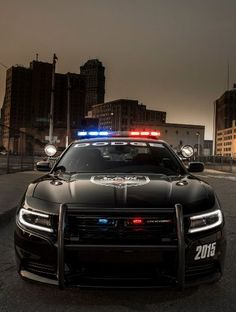 Cool Dodge 2017: Watch out! 2015 Dodge Charger Pursuit Launched, Pulling You Over Soon...... Hot muscle cars
