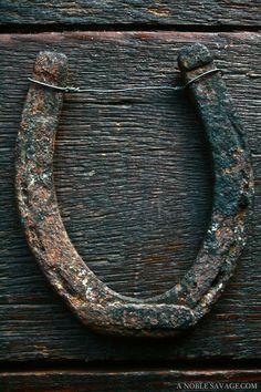The horseshoe over the door....