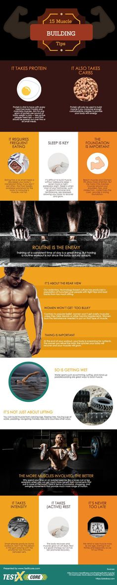 Know the Benefits of Natural HGH for Bodybuilding. Learn how to release growth hormone naturally in your body - click the image Nutrition Information, Nutrition Tips, Health And Nutrition, Nutrition Club, Health Fitness, Muscle Mass, Gain Muscle, Build Muscle, Muscle Diet