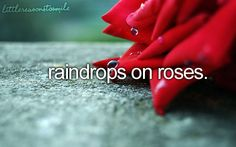 Raindrops on roses. And whiskers on kittens:)