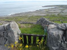 Inis Meain, Aran Islands, Ireland. Spent two days wandering this Island. Come with me someday. :)