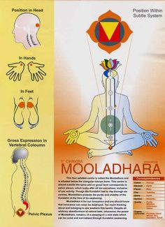 Mooladhara Chakra (via Kundalini tradition)