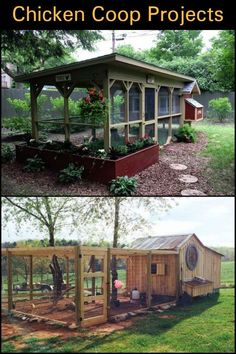 Building your own chicken coop is better than buying one that's already fabricated.