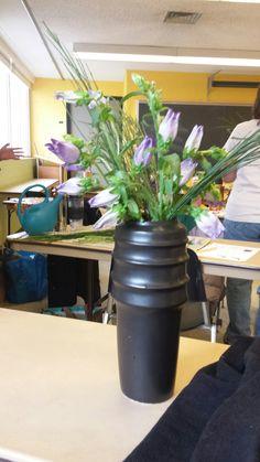 Baumschule Eggert cytisus scoparius baumschule eggert blütensträucher baumschulen