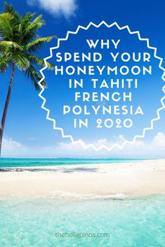 Why you should choose to spend your honeymoon in French Polynesia in 2020 - the best honeymoon ideas to enjoy a vacation in islands like Tahiti, Bora Bora, Moorea, and other French Polynesian islands #traveldream #beautifulvacations #traveltogether French Polynesia Honeymoon, Tahiti French Polynesia, Top Places To Travel, Top Travel Destinations, Best Honeymoon, Honeymoon Ideas, Cheap Tropical Vacations, Best Island Vacation, Polynesian Islands