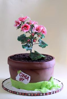 Pelargonium Cake - Cake by marulka_s Flower Pot Cake, Flower Pots, Flower Cakes, Creative Cakes, Unique Cakes, Gravity Defying Cake, Adult Birthday Cakes, Sculpted Cakes, Cupcake Cookies