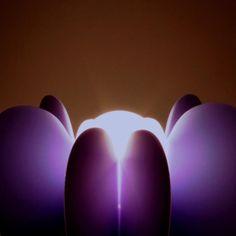 #gemma #joinlamp #wonderful #sun #light #sunrise
