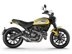 Ducati have presented the Scrambler, after months of teasing, the Italian brand have finally revealed the vintage inspired motorbike at the Intermot Show in Germany. The Ducati Scrambler is a contemporary interpretation of the iconic Ducati model fro Motos Honda, Ducati Motorcycles, Custom Motorcycles, Motorcycles For Sale, Custom Harleys, Custom Bikes, Moto Scrambler, Ducati Custom, Moto Journal