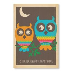 MOD Owls Poster Print - Original Vintage Series - Temple & Webster presents