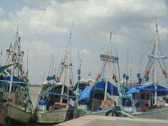 Brasil - Barcos no Ver-O-Peso - Belém/Pará