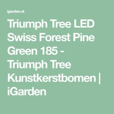 Triumph Tree LED Swiss Forest Pine Green 185 - Triumph Tree Kunstkerstbomen | iGarden