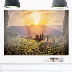 Vine Farm at Sunset Tuscany Panorama - Landscape Glossy