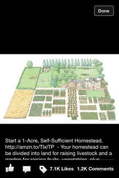 1 acre self sufficient homestead