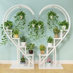 Balcony Flowers, Balcony Plants, House Plants Decor, Indoor Plants, Indoor Gardening, Balcony Garden, Interior Balcony, Room Interior, Rosen Arrangements