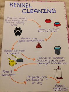 Kennel cleaning