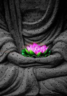 Meditation #Buddha and #lotus flower