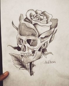 skull pencil drawing