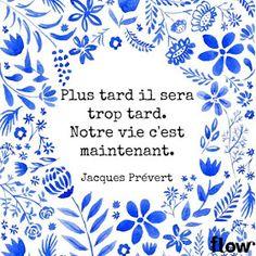 Le blog de Lice - Blog paris mode, beauté & lifestyle: 8 citations pour une pensée positive